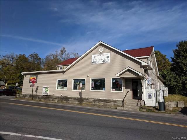 18 Plattekill Ardonia Road, Wallkill, NY 12589 (MLS #H6087675) :: Mark Seiden Real Estate Team