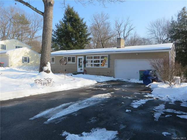 199 Roosevelt Road, Hyde Park, NY 12538 (MLS #H6087997) :: Mark Seiden Real Estate Team