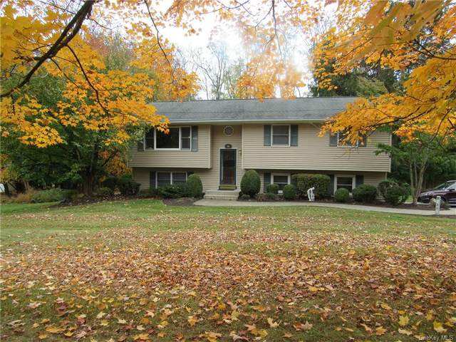 23 Maple Avenue, Goshen, NY 10924 (MLS #H6088335) :: Mark Seiden Real Estate Team