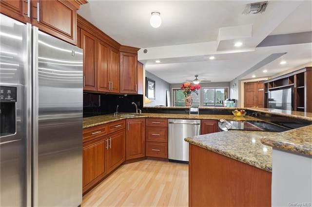4 Marina Drive A1, Mahopac, NY 10541 (MLS #H6088510) :: Nicole Burke, MBA | Charles Rutenberg Realty