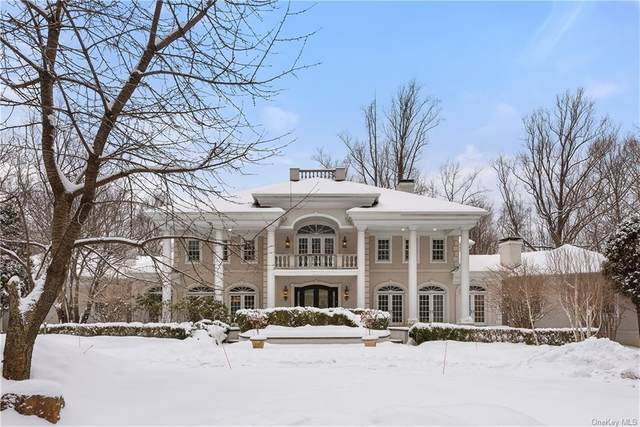 115 Lower Shad Road, Pound Ridge, NY 10576 (MLS #H6088518) :: William Raveis Baer & McIntosh
