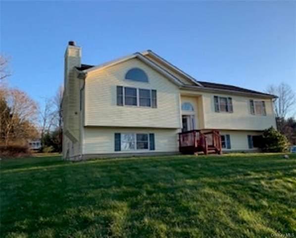 44 Gurda Lane, Pine Island, NY 10969 (MLS #H6088557) :: William Raveis Baer & McIntosh