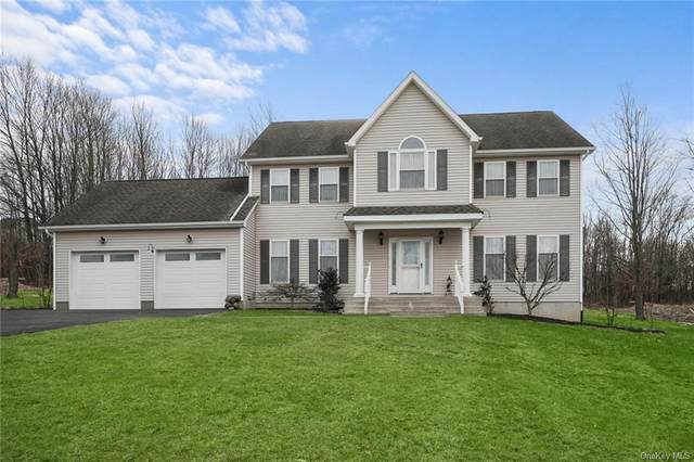 10 Country Woods Drive, Chester, NY 10918 (MLS #H6088818) :: William Raveis Baer & McIntosh
