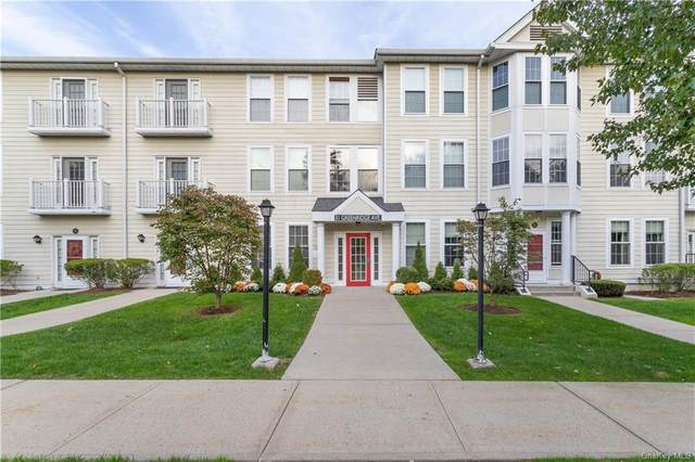 31 Greenridge Avenue 1B, White Plains, NY 10605 (MLS #H6089109) :: The McGovern Caplicki Team