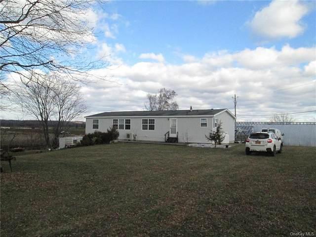 60 Bierstine Lane, Pine Island, NY 10969 (MLS #H6089184) :: William Raveis Baer & McIntosh