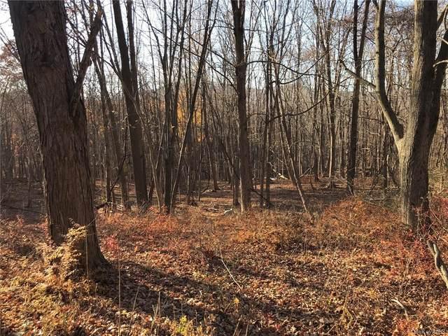 Rockwald Road, Cold Spring, NY 10516 (MLS #H6089204) :: Kevin Kalyan Realty, Inc.