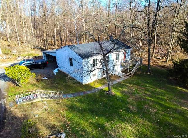 1062 Beekman Road, Hopewell Junction, NY 12533 (MLS #H6089594) :: Kevin Kalyan Realty, Inc.