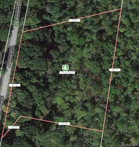 Lot 11 Shamrock Drive, Putnam Valley, NY 10579 (MLS #H6089599) :: Mark Seiden Real Estate Team