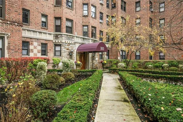 300 Main Street 3A, White Plains, NY 10601 (MLS #H6089642) :: The McGovern Caplicki Team