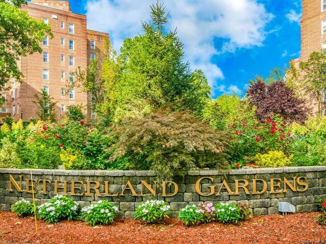 5650 Netherland Avenue 2 C, Bronx, NY 10471 (MLS #H6089782) :: Carollo Real Estate