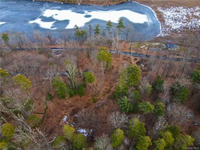 TBD Lake Road, Lake Katrine, NY 12449 (MLS #H6089821) :: Kevin Kalyan Realty, Inc.