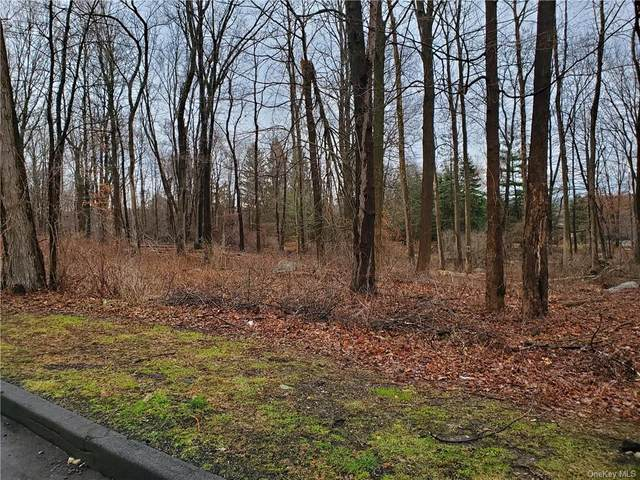 28 Silver Gate Road, Mahopac, NY 10541 (MLS #H6089946) :: Mark Seiden Real Estate Team