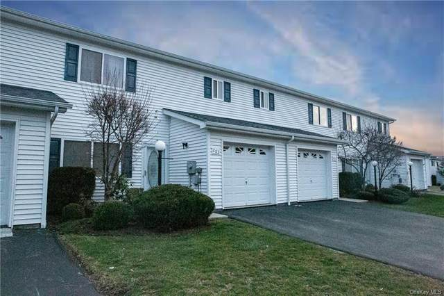 203 Tamerisk Lane, New Windsor, NY 12553 (MLS #H6089957) :: Nicole Burke, MBA | Charles Rutenberg Realty