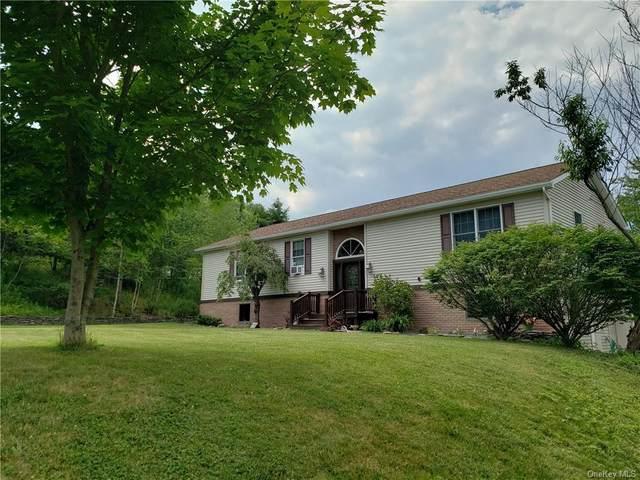149 Dubois Street, Livingston Manor, NY 12758 (MLS #H6089983) :: Kevin Kalyan Realty, Inc.