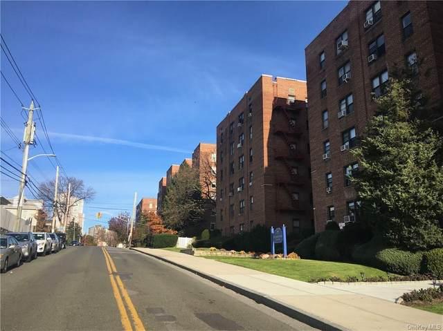164 Church Street 3A, New Rochelle, NY 10805 (MLS #H6090004) :: William Raveis Baer & McIntosh