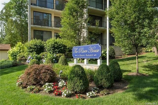 150 Overlook Avenue 4M, Peekskill, NY 10566 (MLS #H6090059) :: William Raveis Baer & McIntosh