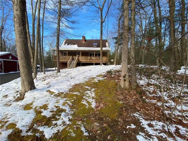49 Devlin Road, Highland Lake, NY 12743 (MLS #H6090071) :: William Raveis Baer & McIntosh
