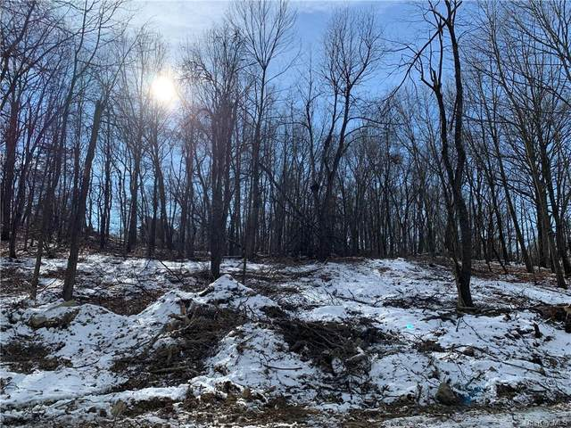 979 State Route 32, Wallkill, NY 12589 (MLS #H6090078) :: Mark Boyland Real Estate Team
