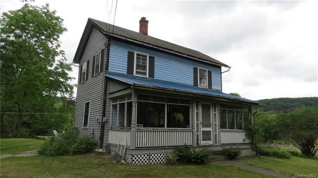 43 3rd Avenue, Narrowsburg, NY 12764 (MLS #H6090091) :: Kevin Kalyan Realty, Inc.