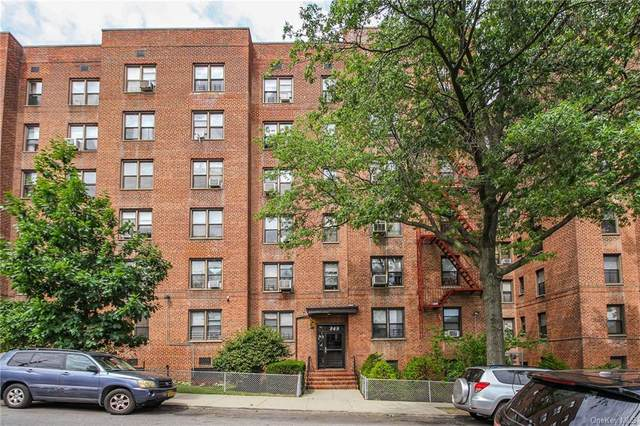 749 E 231st Street 6D, Bronx, NY 10466 (MLS #H6090115) :: Signature Premier Properties