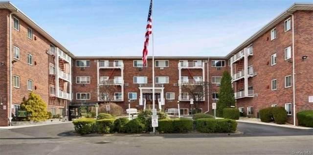 838 Pelhamdale Avenue, New Rochelle, NY 10801 (MLS #H6090150) :: Mark Boyland Real Estate Team