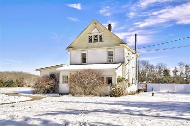 77 Cross Road, Cochecton, NY 12726 (MLS #H6090219) :: Mark Seiden Real Estate Team