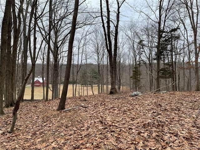 49 Black Brook Road, Pound Ridge, NY 10576 (MLS #H6090280) :: Mark Boyland Real Estate Team