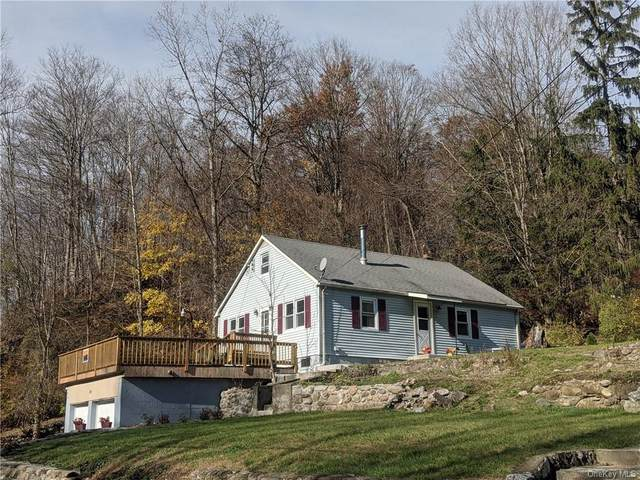134 Old Route 22, Wassaic, NY 12592 (MLS #H6090377) :: Keller Williams Points North - Team Galligan