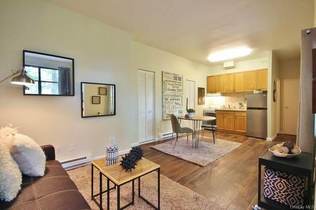 55 Fieldstone #38, Hartsdale, NY 10530 (MLS #H6090400) :: Howard Hanna Rand Realty