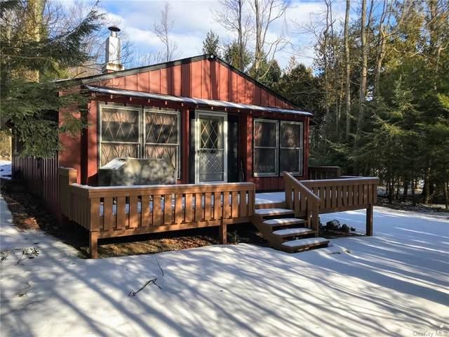 240 Wolf Lake Road, Wurtsboro, NY 12790 (MLS #H6090456) :: William Raveis Baer & McIntosh