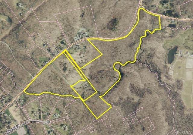 921-929 Old Post Road, Bedford, NY 10506 (MLS #H6090539) :: William Raveis Baer & McIntosh