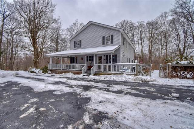 180 Macdougal Road, Roscoe, NY 12776 (MLS #H6090561) :: The McGovern Caplicki Team