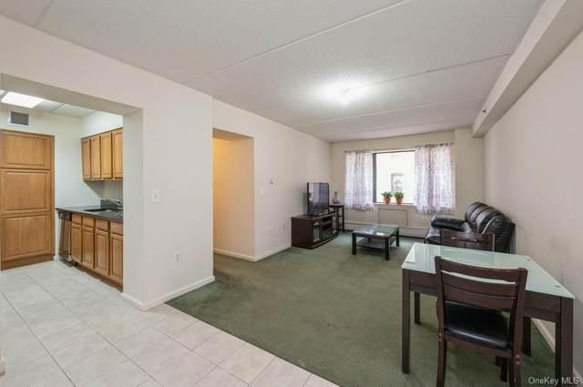 1259 Grant Avenue 5H, Bronx, NY 10456 (MLS #H6090634) :: Carollo Real Estate