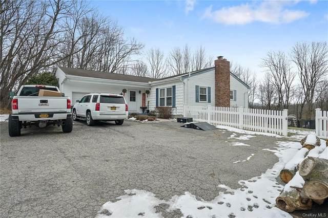 153 Gregory Road, Johnson, NY 10933 (MLS #H6090661) :: William Raveis Baer & McIntosh