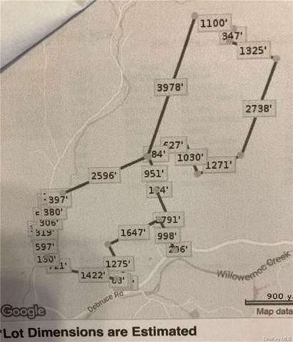 Debruce, Livingston Manor, NY 12758 (MLS #H6090715) :: William Raveis Baer & McIntosh