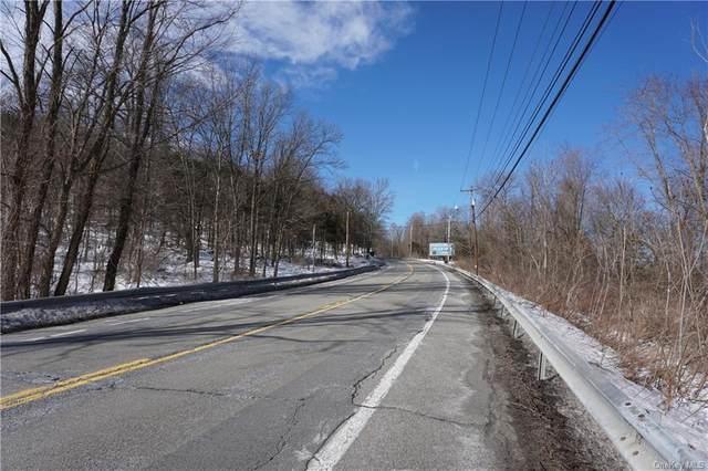 120 Bracken Road, Montgomery, NY 12549 (MLS #H6090949) :: William Raveis Baer & McIntosh