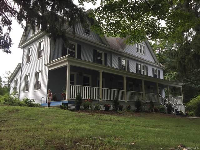 108 Polster Road, Callicoon, NY 12723 (MLS #H6091005) :: Signature Premier Properties