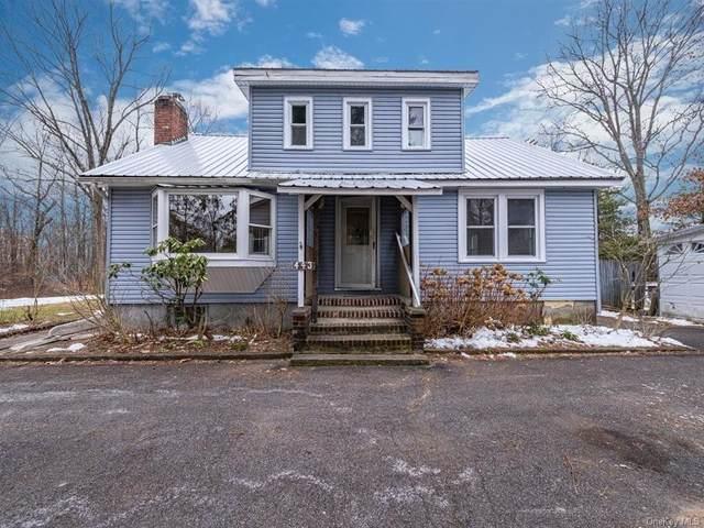 443 S Ohioville Road, New Paltz, NY 12561 (MLS #H6091045) :: Barbara Carter Team