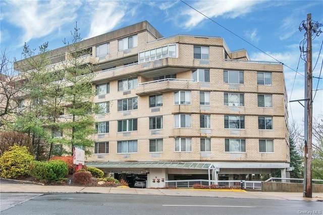 1270 North Avenue 2E, New Rochelle, NY 10804 (MLS #H6091120) :: Cronin & Company Real Estate