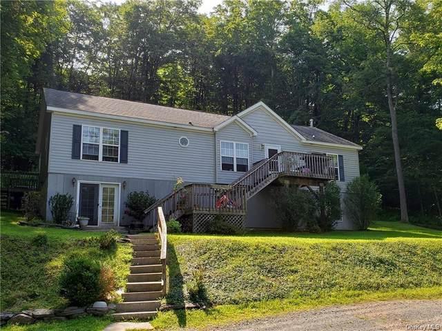 356 Benton Hollow Road, Livingston Manor, NY 12758 (MLS #H6091121) :: The Home Team
