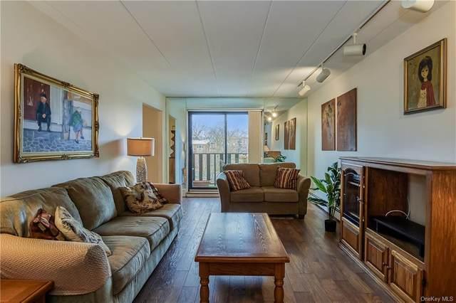 666 Pelham Road 6E, New Rochelle, NY 10805 (MLS #H6091131) :: Cronin & Company Real Estate
