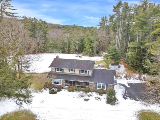 20 Steges Road, Eldred, NY 12743 (MLS #H6091186) :: Mark Seiden Real Estate Team