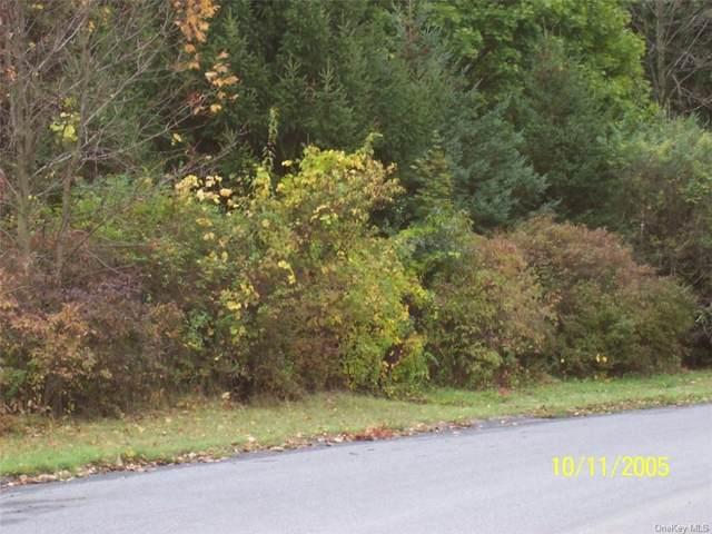 College Lane, Millbrook, NY 12545 (MLS #H6091188) :: William Raveis Baer & McIntosh