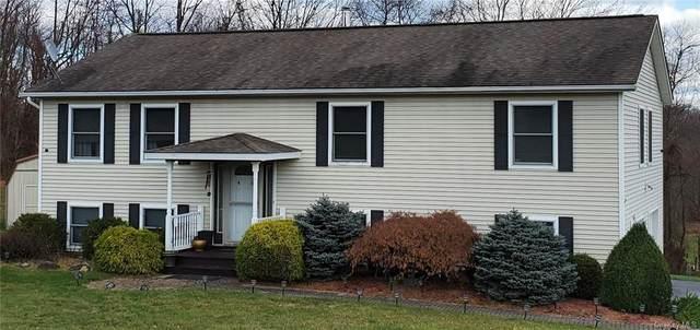 46 Old Roosa Gap Road, Bloomingburg, NY 12721 (MLS #H6091215) :: Nicole Burke, MBA | Charles Rutenberg Realty