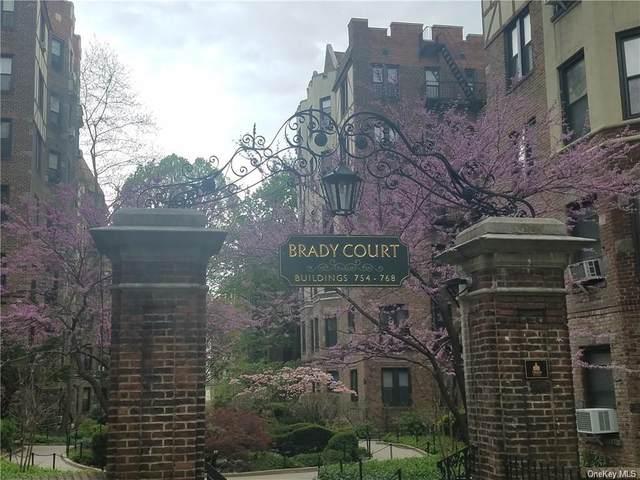 768 Brady Avenue #341, Bronx, NY 10462 (MLS #H6091216) :: Howard Hanna Rand Realty