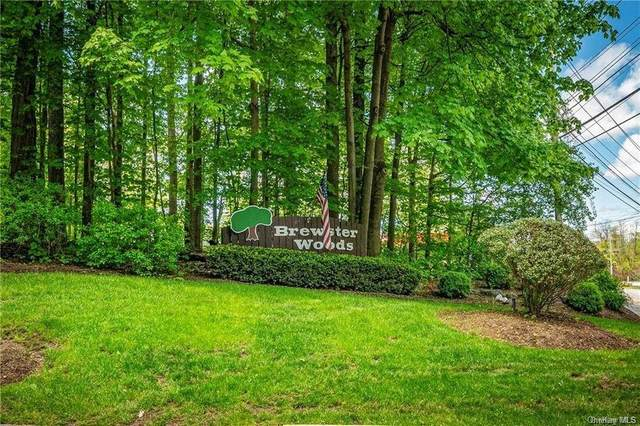 30 Brewster Woods Drive, Brewster, NY 10509 (MLS #H6091273) :: Kevin Kalyan Realty, Inc.