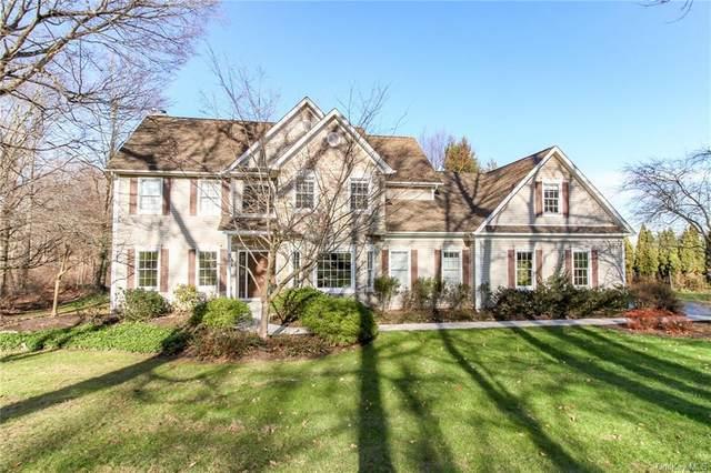 36 Springview Lane, Hopewell Junction, NY 12533 (MLS #H6091287) :: Mark Seiden Real Estate Team