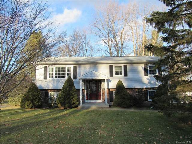 3 Colony Drive, Monroe, NY 10950 (MLS #H6091355) :: Signature Premier Properties