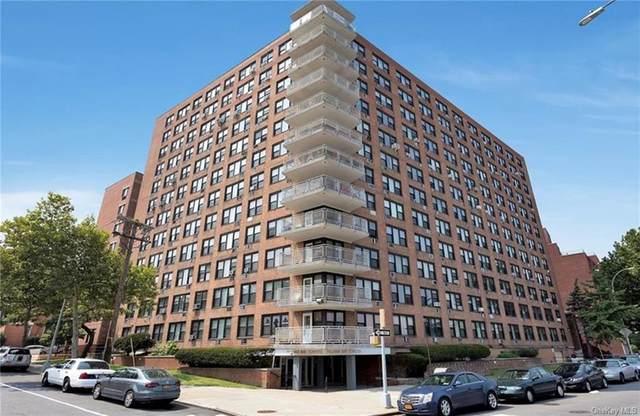3121 Middletown Road 3E, Bronx, NY 10461 (MLS #H6091375) :: Nicole Burke, MBA   Charles Rutenberg Realty
