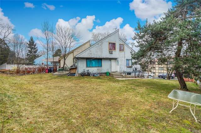 45 S Cole Avenue, Spring Valley, NY 10977 (MLS #H6091450) :: William Raveis Baer & McIntosh